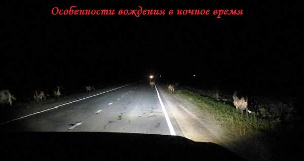 Правила вождения в ночное время