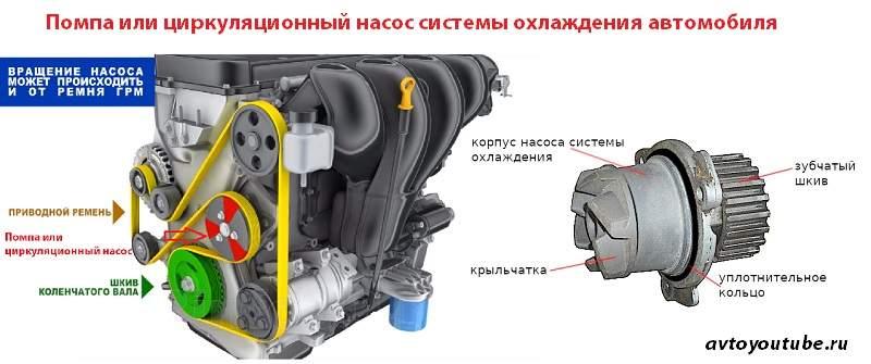 Где находится и из чего состоит помпа системы охлаждения автомобиля
