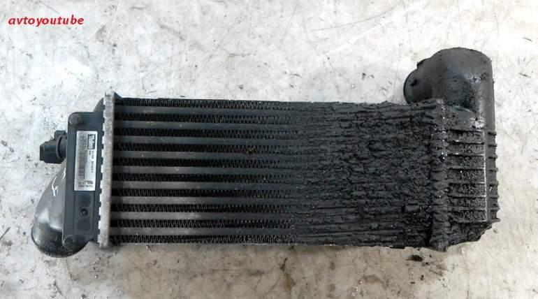 Вторая проблема интеркулеров в автомобиле – засорение поверхности теплообмена дорожной грязью